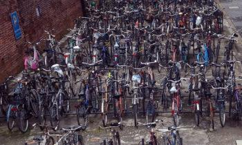 Fahrräder in Bologna