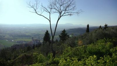 Blick von den Hügeln bei Assisi