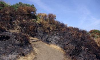 Vulkanschäden auf Stromboli