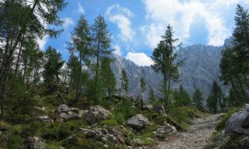 Karnischer Höhenweg nahe der Wolayeralm