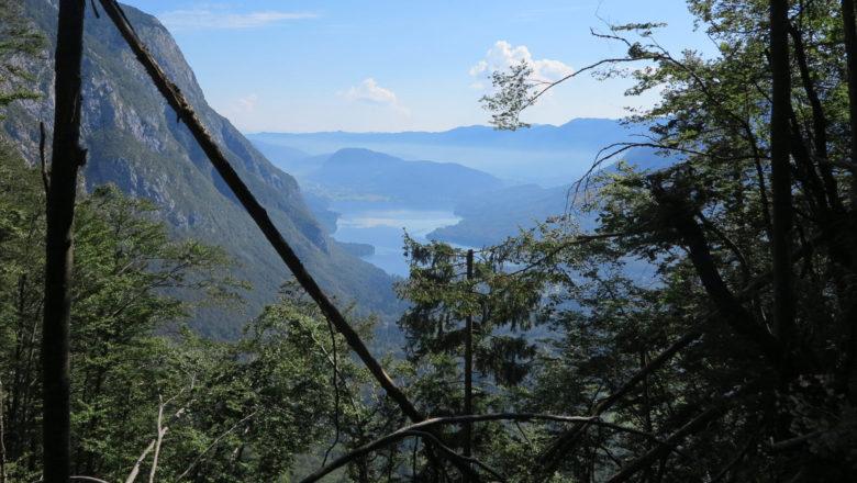 Blick auf den Bohinj See
