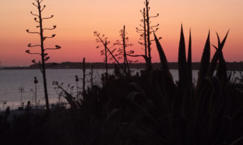 Sonnenuntergang in Conil de la Frontera
