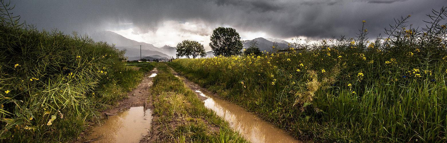 Outdoor: Regen