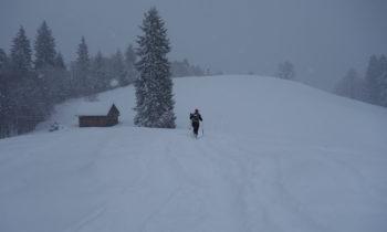 Schneeschuhwandern beim Gasthof Eckbauer