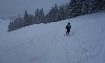 Schneeschuhwandern vor Wamberg-1