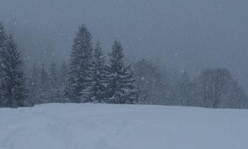 Schneeschuhwanderung in Garmisch-Partenkirchen