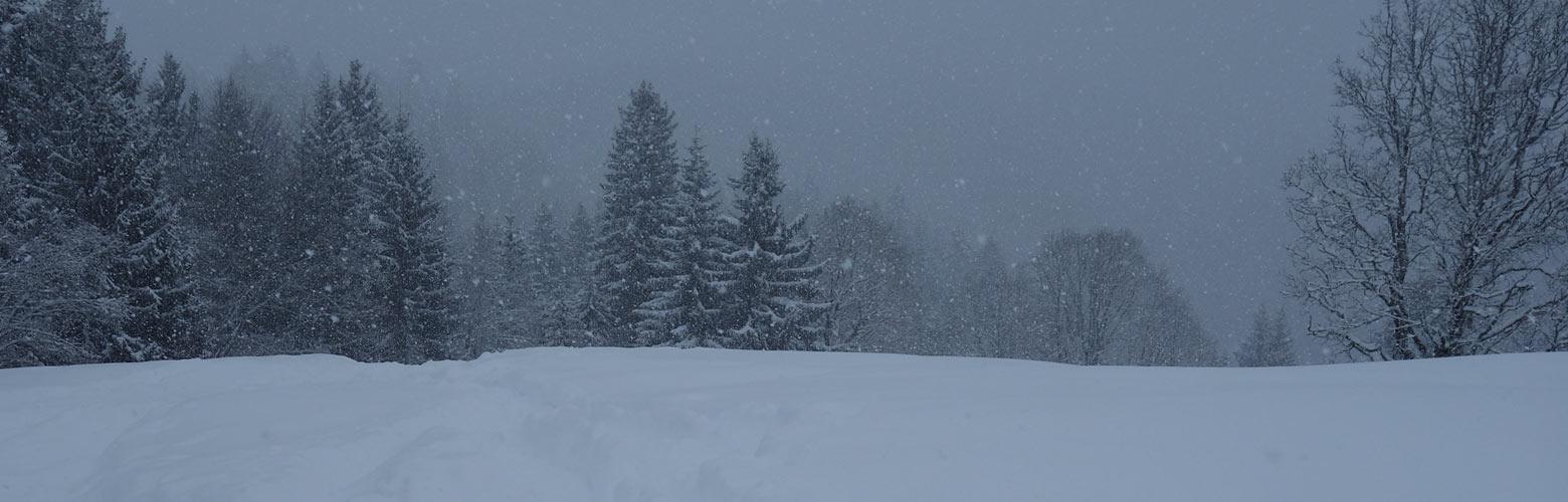 Schneeschuhwandern bei Garmisch-Partenkirchen