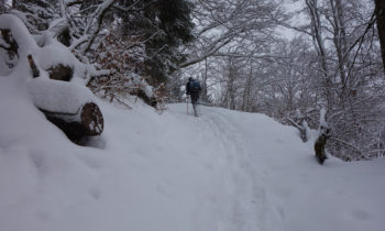 Schneeschuhwandern im Wetterstein