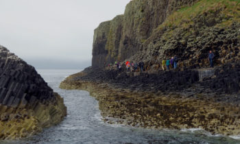 Wildlife Tour auf Staffa