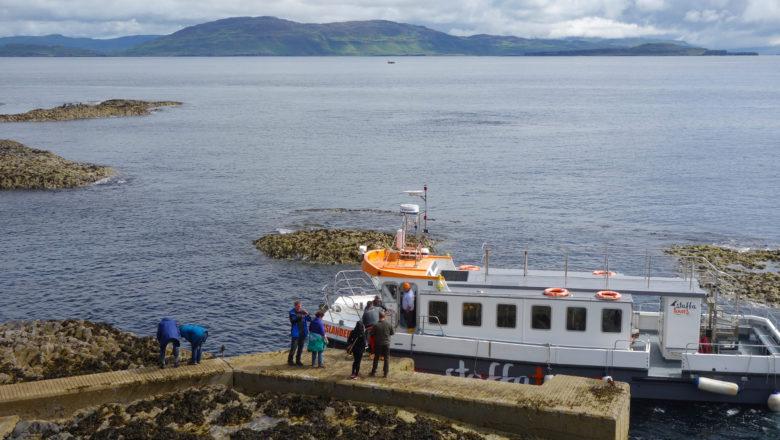 Wildlife Tour mit dem Boot auf den Inneren Hebriden