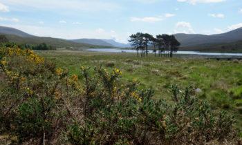 See in den schottischen Highlands