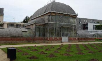 Gewächshaus im Jardin des Plantes