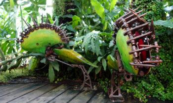 Fleischfressende Pflanzen bei Les Machines de l'île