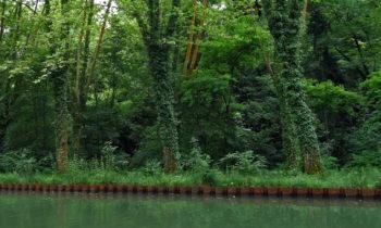 Ufer des Garonne-Seitenkanal