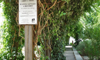 Jardin Raymond VI, Toulouse