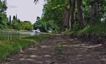 Radweg am Canal du Midi