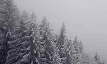 Durch die Wolken mit der Alpspitzbahn