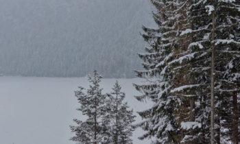 Blick auf den zugefrorenen Eibsee
