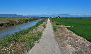Wegenetz im Ebro Delta