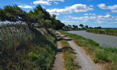 Starker Wind im Naturpark Narbonnaise en Méditerranée