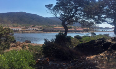 Cala Reale auf Asinara