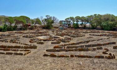 Gefängnisgarten auf Asinara