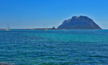 "Die ""Dracheninsel"" Isola di Tavolara"