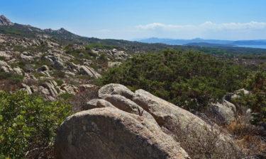 In den Bergen von Caprera
