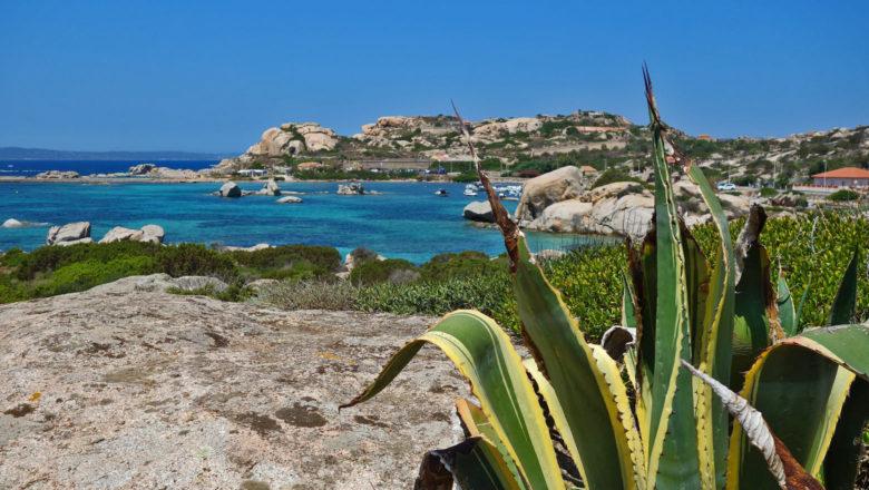 Küste der Isola Maddalena
