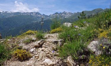 GR 20 Bergpanorama auf Korsika