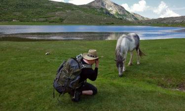 Tierisches Model am Lac de Nino
