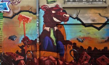 Rattenkönig in La Plaine