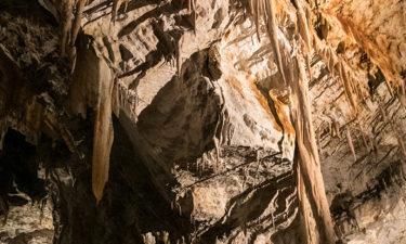 Stalagmiten in der Postojna Höhle