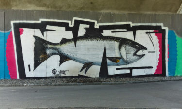 Street Art in Villach