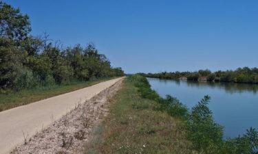 Radweg im Naturpark Camargue