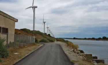 Windräder in der Camargue