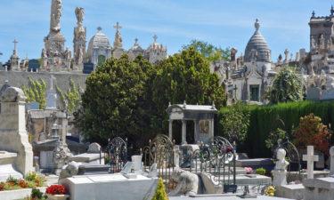 Friedhof Cimetière du Château in Nizza