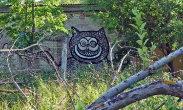 Grinsekatze: Street Art in Tallinn
