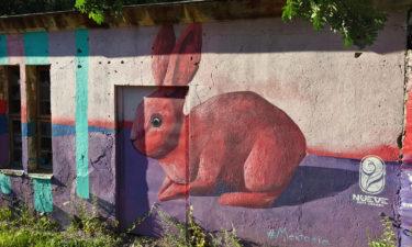 Mextonia Street Art in Tallinn